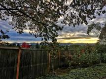 Portland2-59