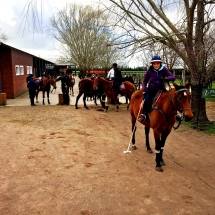 Riding out of the stables