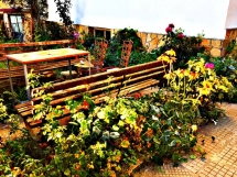 2-garden-in-chepelare