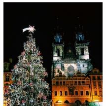 Christmas Tree Old Square Night