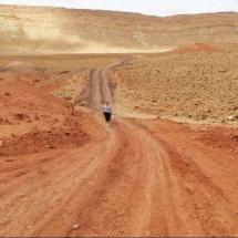 mars-and-karen-walking