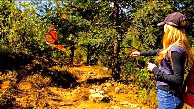 Me reaching to the butterflies