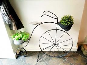 Plant Art Hotel Villa Condesa