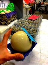 Mercado San Juan Ostrich Egg
