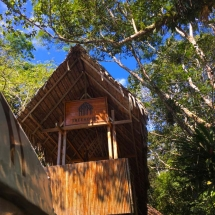 Front of treehouse lodge2
