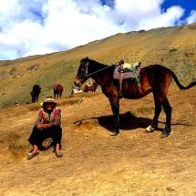 Rainbow Mtn local w horse