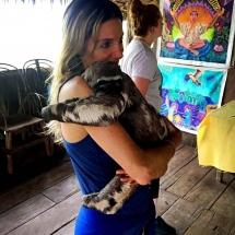 Sloth Pablito1