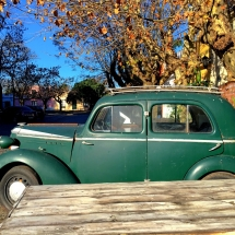 Old Cars Colonia